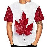 ZEFOTIM Herren Bluse mit Farbverlauf, langärmelig, Muskeldesign, einfarbig, T-Shirt - - Mittel