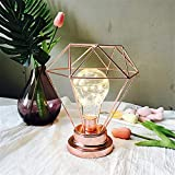 Led Lichterketten, Polygonal Metall Lampenschirm String Lampe Weihnachtsbaum Dekoration Licht, Dekor...