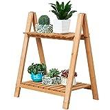 CJSWT 2 Schichten Mini Bambuspflanze Ständer Kleine Blume Display Rack Regal Planter Indoor Outdoor...