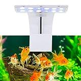 Clip für Aquariumbeleuchtung LED Aquarium Aquarium Beleuchtung Pflanzen Beleuchtung Aquarium LED...