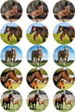 Essbarer Torten- & Muffinaufleger Pferd Mix / 15 Stück 5cm Ø