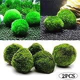 Jorzer 2st 3-4cm Marimo Moss Ball Aquarienpflanze Algen Fisch Shrimp-behälter-verzierung