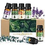Ätherisches Öl, GLAMADOR Ätherische Öle Set, Essential Oil für Aromatherapie, 100% Rein Öle...