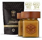 Manuka Honig Set: Manuka South MGO514+ (UMF15+) 250g Manuka South MGO 182+ (UMF8+) 250g und...