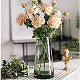 Glasvase, Ins Style handgemachte kristallklare Blumenvase Gold Linie Mund dekorative Vase...