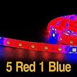 Ameginer LED Wachsen Licht Streifen Rot Blau Volle Spektrum IP65 Phyto Lampe DC12V für Gewächshaus...