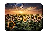 Laptop Skin für MacBook Pro 13 15 16 17 12 Air 13 11 Aufkleber Vinyl Sticker Marmor Notebook Print...