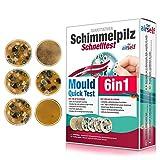 Schimmeltest fr zu Hause - Schimmelpilz Test fr bis zu 6 Rume - Schimmelpilz Schnelltest zur...
