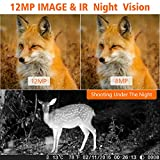 Wildkamera Fotofalle 14MP 1080P Full HD Jagdkamera 90Weitwinkel 20m Nachtsichtkamera mit...