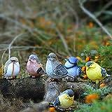 SUREH Dekofiguren für Vögel, Kunstharz, für den Garten, für den Außenbereich, lustige Skulptur,...