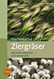 Taschenatlas Ziergrser: 188 Arten erkennen und verwenden (Taschenatlanten)