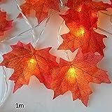 yhdcc44 LED-Lichterkette, batteriebetrieben, für Halloween, Garten, Zuhause, Weihnachtsbaum,...