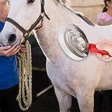 Juckreizbürste aus Metall für Pferde Juckreizpinsel für Pferde, Juckreizpinsel für Nutztiere,...