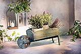 Pflanzer Schubkarre aus Holz 78 cm groß Pflanzschubkarre Blumenkarre Pflanzgefäß Gartendeko...