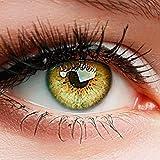 ELFENWALD farbige Kontaktlinsen, 3 - Monatslinsen, INTENSE BERNSTEIN, stark deckend, natürlicher...