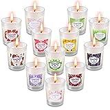 Facio Duftkerzen Geschenkset, 12 Stück Natürliches Sojawachs Tragbare Reisekerzen Kerzen Frauen...