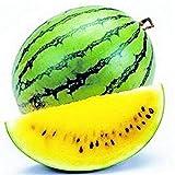Obstsamen Gemüse Samen1 Tasche Wassermelone Samen rustikale saftig gemischte Farbe Wassermelone...