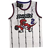 CHERSH NBA Männer # 2 Toronto Raptors Jersey, Hartholz-Klassiker Swinger gestickter Basketball...