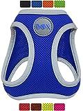 DDOXX Brustgeschirr Air Mesh, Step-In, reflektierend, verstellbar, gepolstert   viele Farben &...