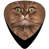 Big Face Brown Cat Gitarrenplektren, 0,46/0,96/0,71 mm, Zelluloid, verschiedene Farben, 12 Stück