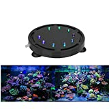 KAIKUN Aquarium Led Beleuchtung Pool Unterwasser Licht Fish Tank Light Led Unterwasser Aquarium...