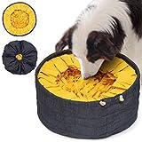 LIXDEE Schnüffelteppich für Hunde zum Schnüffeln DEE.DEN – Riechen Trainieren Schnüffeldecke...