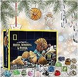 Qiusa Rocks Collections Activity Kit Rocks Minerals und Fossilien, Sammlung, frühes...
