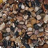 Kieselsteine - 3,6kg Verschiedene Mini Deko Steine für Vasen (1,4-2,6cm Kies) – Pebbles Zierkies...