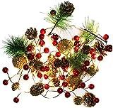 Lichterketten, Lichterkette, Weihnachten, Kieferapfen, 2 m, 20 LEDs, batteriebetrieben, Mini-LED...