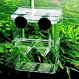 IUwnHceE Aquarium Kunststoff Fisch Zucht Box Shrimp Hatchery Fish Tank Incubator Box Schwimmdock...