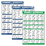 Palace Learning 3er-Pack: Hantel-Trainingsposter Volume 1 & 2 + Langhantel-Übungen – Set mit 3...