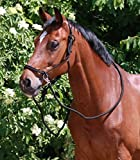 WALDHAUSEN Knotenhalfter mit Zügel, schwarz, Pony, schwarz, Pony
