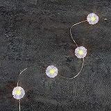 Kleine Gänseblümchen-Lichterketten (Led Flower Indoor String Lights) Für Party, Geburtstag,...