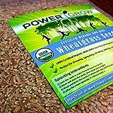 Ferry 10000: Weizengras/Katzengras Samen ~ Certified USDA Organic beträgt 50 LBS Bulk