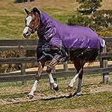Weatherbeeta Comfitec Plus Dynamic Combo Hals Medium Weide Pferdedecke (145cm) (Violett/Schwarz)