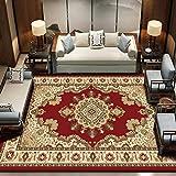 CHXY Traditioneller Klassischer Wohnzimmer Teppich,Orientteppich Teppich Perser Muster - Viele...