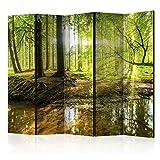 murando Raumteiler Wald Baum Natur Foto Paravent 225x172 cm beidseitig auf Vlies-Leinwand Bedruckt...