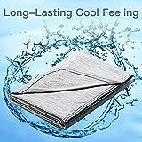 Marchpower Kühldecke Mikrofaser Sommerdecke Selbstkühlende aus Baumwolle Decke 2 in 1 doppelseitig...