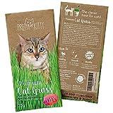 Premium Katzengras Samen: 1 Beutel mit 25g Saatmischung für 10 Töpfe fertiges Katzengras zum...