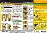 Backgammon: Backgammon-Regeln. Alle Regeln in der Übersicht. Spielbrett, Aufbau, Ablauf und...