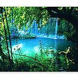 murando Fototapete Natur 300x210 cm Vlies Tapeten Wandtapete XXL Moderne Wanddeko Design Wand...