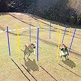 Eono by Amazon Ausrüstung für Agility-Training für Hunde, Spiele im Freien, 12 Flexible Stangen