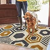 Color&Geometry rutschfeste Schmutzfangmatte 90x150 cm, maschinenwaschbare weiche Fußmatte Türmatte...