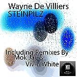 Steinpilz (Mok Jay African Deep Mix)