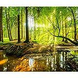 decomonkey Fototapete selbstklebend Wald 3D 343x256 cm XXL Selbstklebende Tapeten Wand Fototapeten...