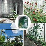 Sunnyushine Rankgitter Netz für den Einsatz im Garten für Kletterpflanzen, Reben und Gemüse,...