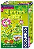 Kosmos Mimosen-Garten, Pflanzen züchten und erforschen, Experimentierset mit Gewächshaus für...