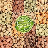Teichpoint 1000 ml (700g) Premium TOP Futtertabletten Opti-Mix 17, Tablettenfutter Mix für Aquarium...