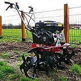 HECHT starke 4,8 kW / 6,5 PS Benzin Motorhacke I 4-Takt Motor I 32-84 cm Arbeitsbreite I 24 robuste...
