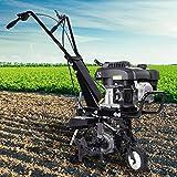 BRAST Benzin Ackerfräse 3,7kW (5PS) Arbeitsbreiten 36cm Radantrieb Motorhacke Gartenfräse...